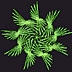 9 fold multiple polyspiral at 177 degrees